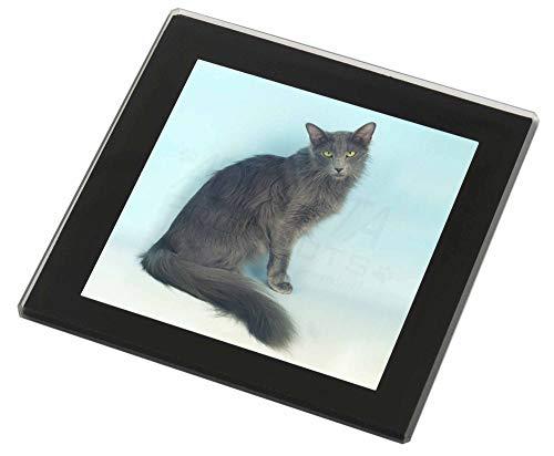 Advanta - Glass Coasters Silver Grey Javanese Katze Glasuntersetzer mit schwarzem Rand -