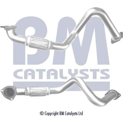 BM CATALYSTS BM50537 Rohrleitungen