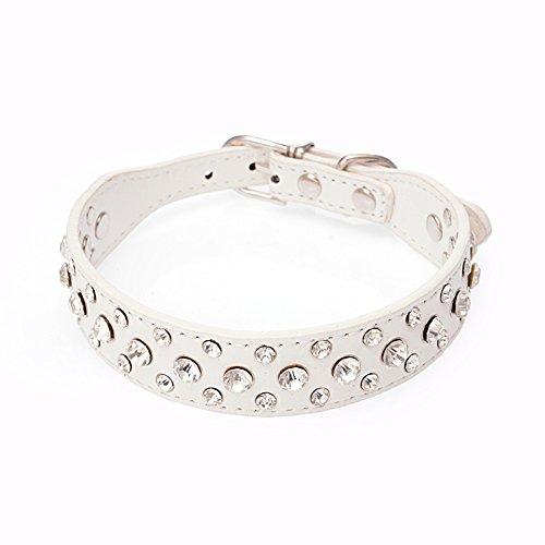 Dogs Kingdom 30,5cm-20Länge Personalisierte Leder Strass Bling Kristall PET Hund Katze Halsbänder für kleine mittelgroße Rassen, M, weiß