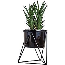 Vasi per piante da interni moderni for Vasi per piante