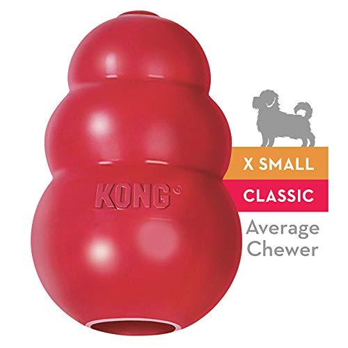 KONG Portabiscotto Classic Kong Giochi Per Cani, XS (Fino a 2 kg)