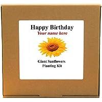Personalised Happy Birthday Giant Sunflowers Plant Kit - Gardening Gift For Him, Her, Mum, Dad, Men, Women or Children