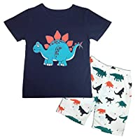 Little Boys Pyjamas Short Set Dinosaur Printed Kids Pajama Pjs Summer Toddler Cotton Sleepwear Tops Shirts & Pants Nightwear Children Outfit Age 2-7 Years