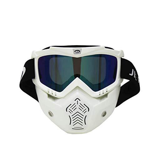 AmDxD PC Motorradbrillen Helmbrille Outdoor Schutzbrillen Maske Radsportbrille für Motorrad Fahrrad...