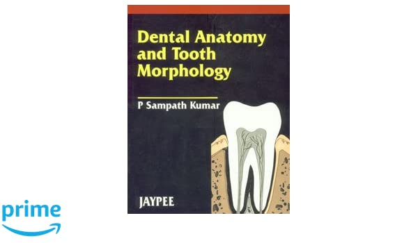 Amazon.in: Buy Dental Anatomy And Tooth Morphology Book Online at ...