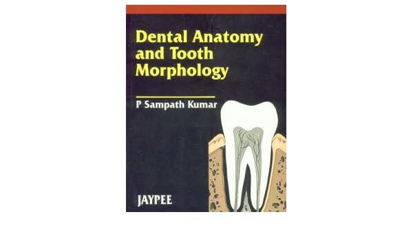 Dental Anatomy And Tooth Morphology Amazon Kumar