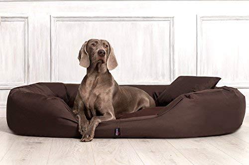 Bild: S401 SAMMY von TIERLANDO Extra ROBUST Hundesofa Hundebett Gr XL 110cm BRAUN