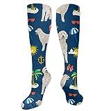 Jiger Men Women Boys Girls Goldendoodle Dog Beach Puppy 3D Compression Socks(20-30 mmHg)- Medical Graduated Compression Stockings for Sports Running Nurses Diabetic FlightXXL
