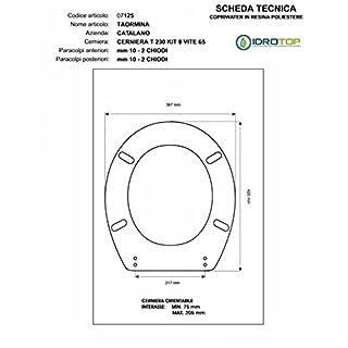 ACB/COLBAM Toilet Catalan Light 1'Version/Taormina Champagne cromo-sedile-asse Toilet Soft Close Hinge Slowed