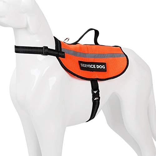 Doglemi Supreach Hund Warnwest Reflektierender, weicher, Verstellbarer West für Hunde mit Henkel und 2 frei entfernbaren Patches, Weste für große Hunde, fluoreszierend gelb, orange (Orange, M) -