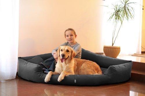 tierlando® Orthopädisches Hundebett TRIVIA Visco Eckbett Eckhundebett Festes Polyester. Ein wahres Platzsparwunder. Gr. L 100cm Graphit