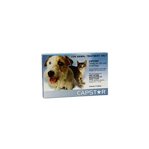 Novartis 290086 Capstar Perro/Gato, 1-11 Kg - 6 Comprimidos