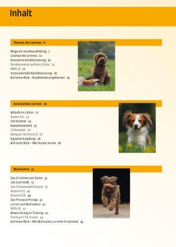 Hundeschule:  Verhalten formen mit dem Clicker - 2