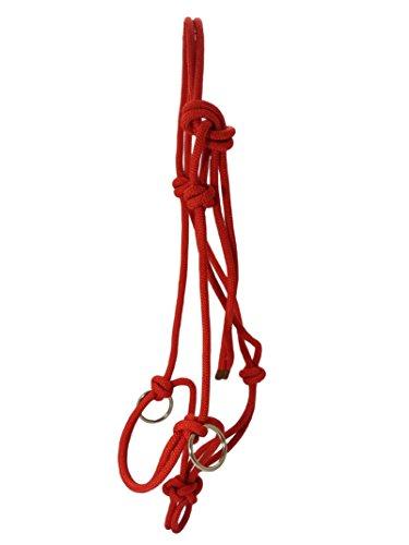 Knotenhalfter mit Ringen aus Edelstahl Halter Reiten Bodenarbeit Rot (Kaltblut)