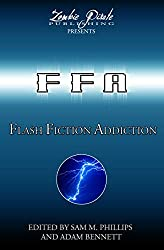FLASH FICTION ADDICTION: 101 Short Short Stories