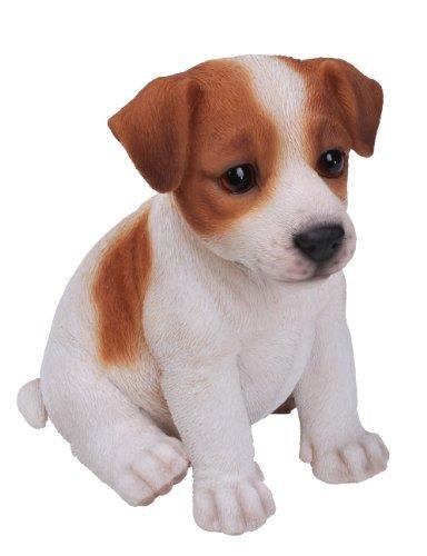 Vivid Arts Vivid Arts Figur Jack Russell Terrier, Braun / Weiß (Russell Jack Terrier Figur)