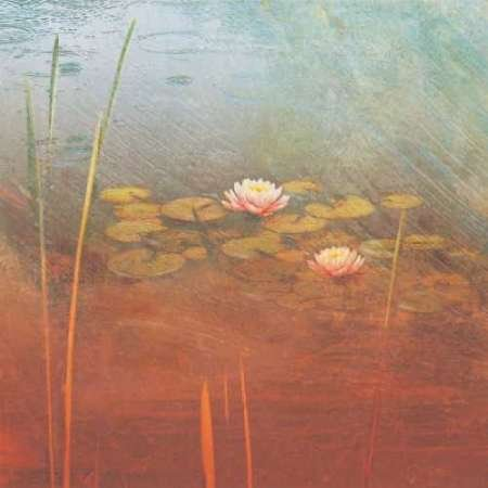 Feeling-at-home-Kunstdruck-Pond-Lilies-II-cm93x93-Poster-fuer-Rahmen -