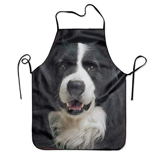 dfhdshsd Personalized Border Collie Aprons Printed Apron for Home Server Women