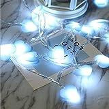 LY-JFSZ Lichterketten,Lady Flower Backyard Indoor Weihnachten Beleuchtung Garten Terrasse Schlafzimmer Party Hochzeit Vorhang Dekoration 3M 20LED USB Access