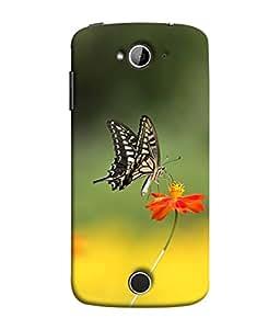 PrintVisa Designer Back Case Cover for Acer Liquid Z530 :: Acer Liquid Zade Z530S (Bloom Claudia Colorful Fritillary Euptoieta Exotic Beautiful Feeding)