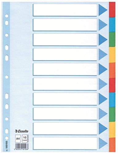 5er Pack Leitz Kartonregister (Standard Blanko, A4, Karton) 10 Blatt weiss