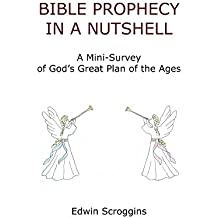 Bible Prophecy in a Nutshell: A Mini-Survey of God's Great Plan of the Ages