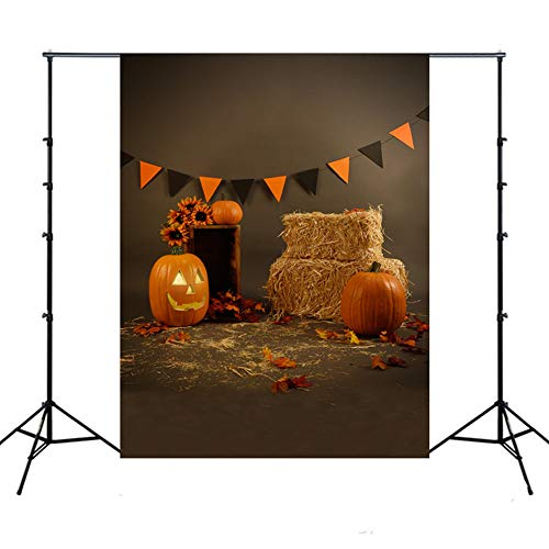 Fotografie Hintergrund Halloween,XGZ Backdrops Kürbis Vinyl Fotografie Studio Halloween Kürbis Laterne Halloween Kulissen (Mehrfarbig F) (Tiger Kostüm Selbstgemacht)