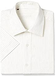 Raymond Mens Striped Regular Fit linen Formal Shirt (RMSY05136-F2_Light Fawn_C40)