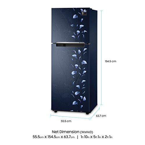 Samsung 253 L 2 Star Frost Free Double Door Refrigerator(RT28M3022UZ/HL, Blue, Inverter Compressor)