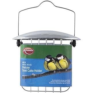 Ambassador Wild Birds Deluxe Suet Cake Holder Ambassador Wild Birds Deluxe Suet Cake Holder 41Y no4ACdL