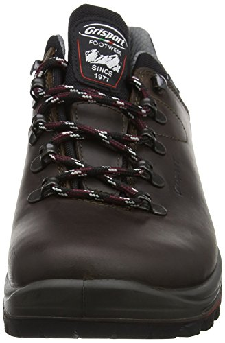 Grisport Unisex Adult Dartmoor GTX Low Rise Hiking Boots 4