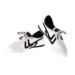 Zapatos de Taekwondo...