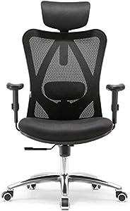 Sihoo Mahmayi Ergonomics Office Chair Computer Chair Desk Chair, Adjustable Headrests Chair Backrest and Armre