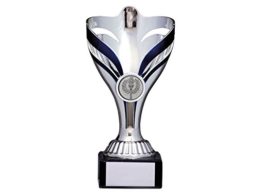 silver-blue-multisport-cone-trophy210mmdancesportsfree-engraving-1731d-mup