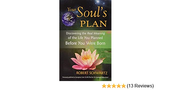 Your Soul's Plan: Discovering the Real Meaning of the Life