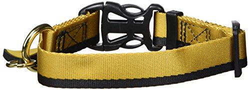 (Star Trek Dog Collar Gold Small- Boldly go where no other dog has gone before by Star Trek)