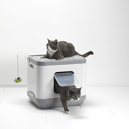 clean-n-tidy-clean-n-tidy-gatto-concetto-multiloo-cubo