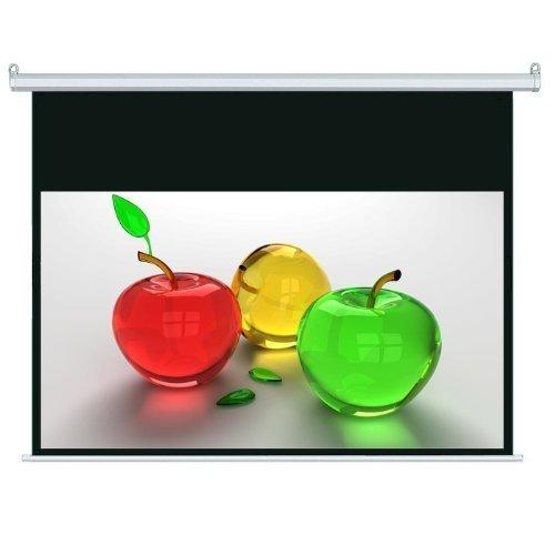 Motorized Projection Screen (Platinum 406.40 cm mit Fernbedienung, 16:9, HD-Projektions-Leinwand/Beamer-Leinwand, elektrisch)