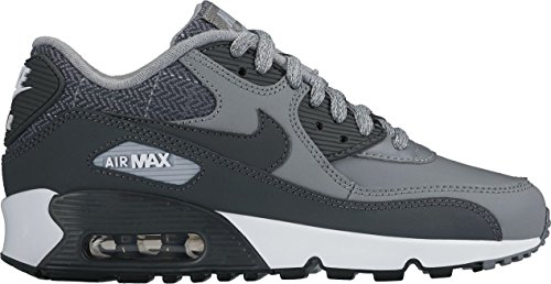 Nike Air Max 90 Cl (Nike Jungen 859560-001 Fitnessschuhe Grau (Cool Anthracite/Wolf Grey/White), 37.5 EU)