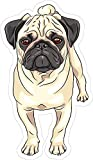 Best Design With Vinyl Decals Friend Items For Girls - Funny Sticker for Men Dog Pug 7 x Review