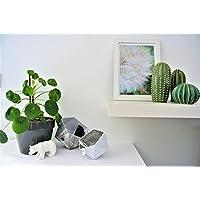 scatole di Origami, legno bianco grigio e bianco opaco