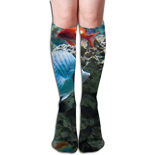 Sweet grape Tropical Fish - Coral Reefs Women's Fashion Knee High Socks Casual Socks -