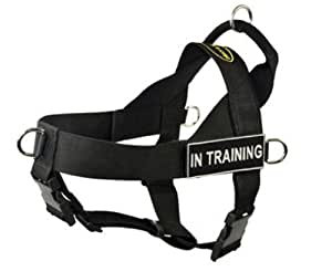 Harnais DT Universal No Pull pour chien, en formation