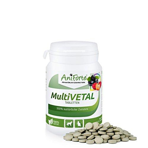 AniForte MultiVETAL Tabletten 100 Stück für Katzen und Hunde, Natürliches Multi-Vitamin mit Bierhefe, Gerstengras, Acerola und Acai (Katze Nahrung)