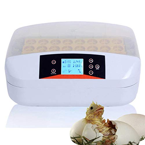 Wiskeo incubatrice automatica 32 uova, incubatore controllo automatico di temperatura, incubatore, con girauova automatico, per pulcini anatra gallina quaglie rettili
