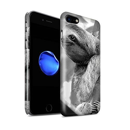STUFF4 Glanz Snap-On Hülle / Case für Apple iPhone SE / Erdmännchen Muster / Zoo-Tiere Kollektion Faultier