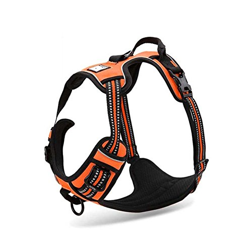 ADOV Dog Harness Extra-large, No Pull Adjustable and Durable Leash For Medium and Large Pet, Reflective Oxford Soft Vest With Handles Perfect For Daily Training Walking Running - Orange