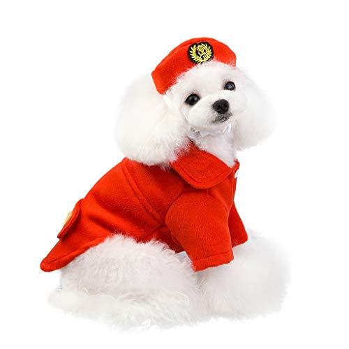 Fenverk Hundekleidung Für Kleine Hundepullover Hund Kleidung Herbst Winter Haustier Katze Hundebekleidung Sweater Warm Kapuzenjacke Hundemantel(,L)