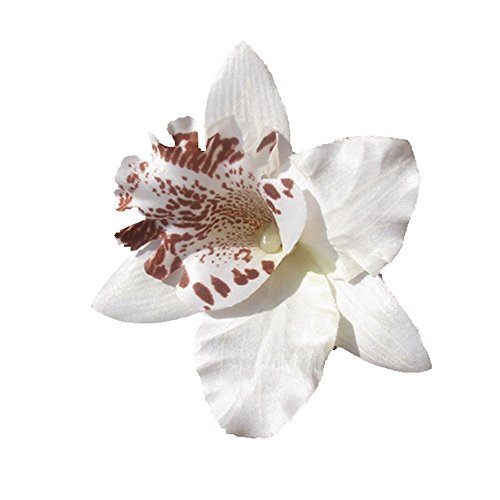 Au-Plaisir-de-los-ojos--Alicate-Cabello-Boda-Broche-Perla-Flor-de-orqudea