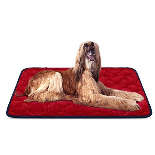 Colchoneta Hero Dog 120cm